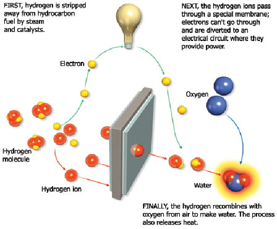 fuelcell 1